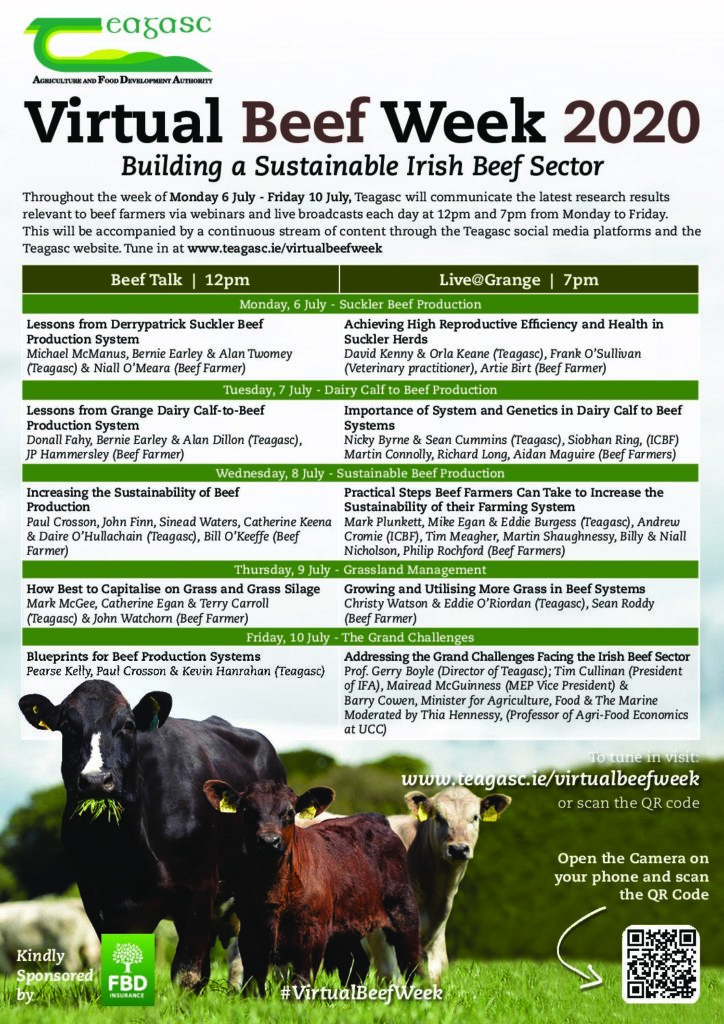 Week View of Teagasc Virtual Beef Week